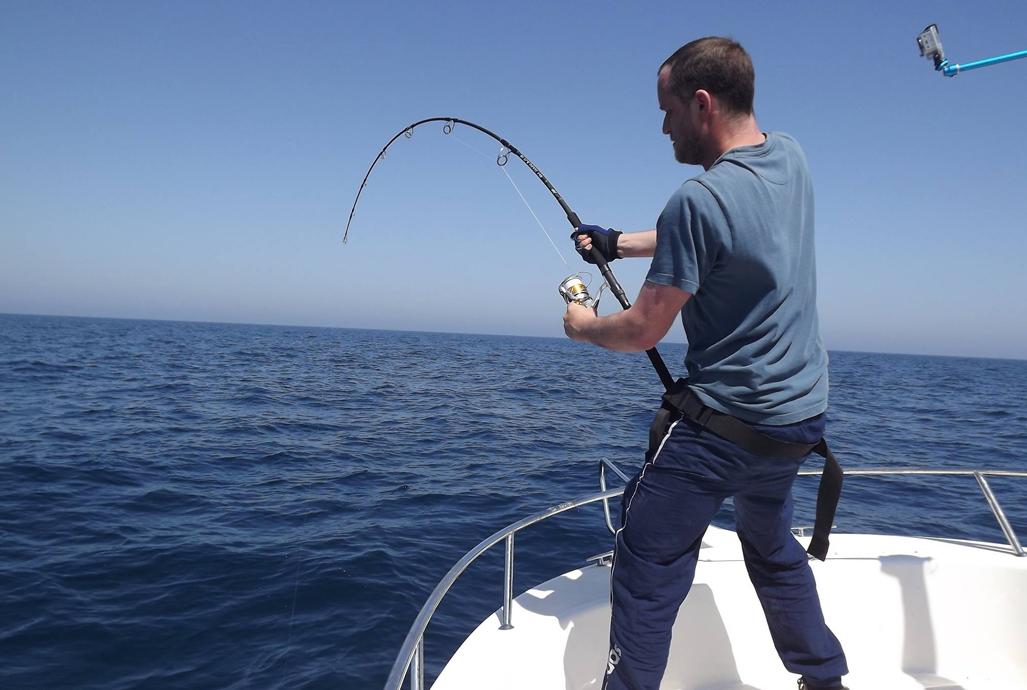 Bluefin Tuna Campaign – Spreading the word