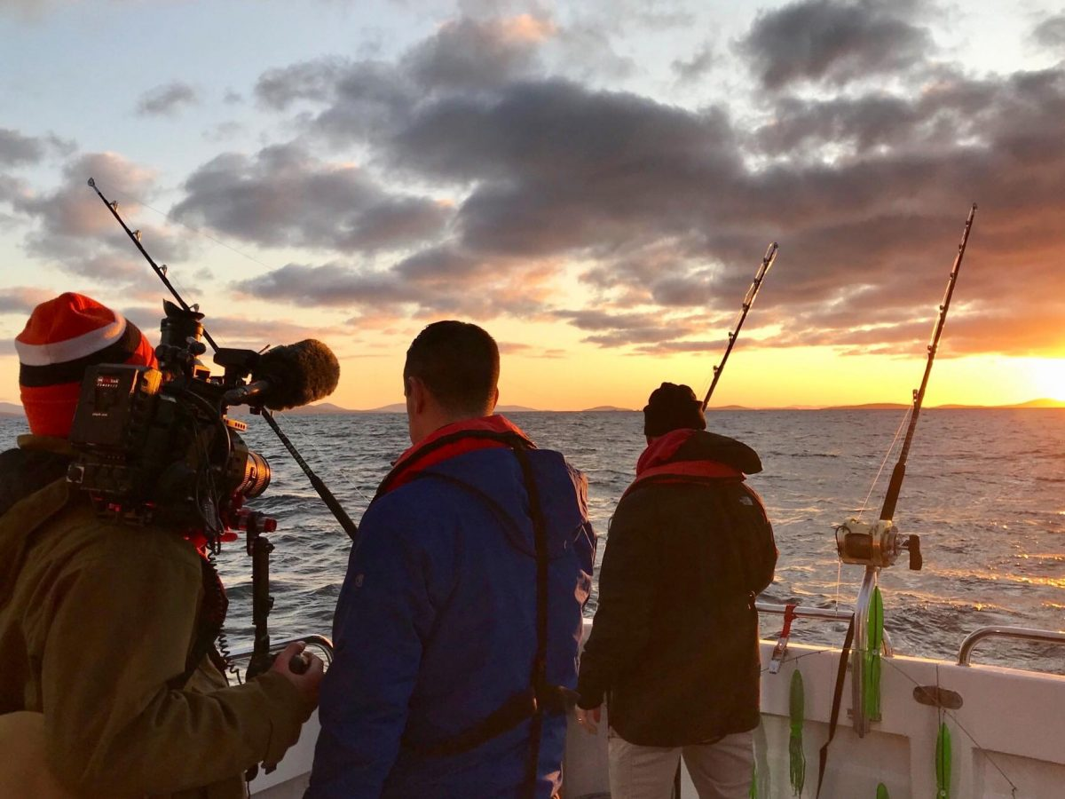Solving the mystery of the return of Bluefin Tuna to N.E. Europe.